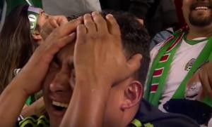 dolormexicano