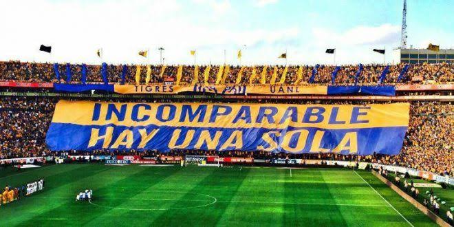 incomparables, los icomparables tigres,incomparables